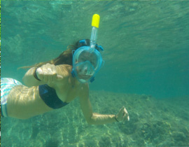 snorkeling in the clear water